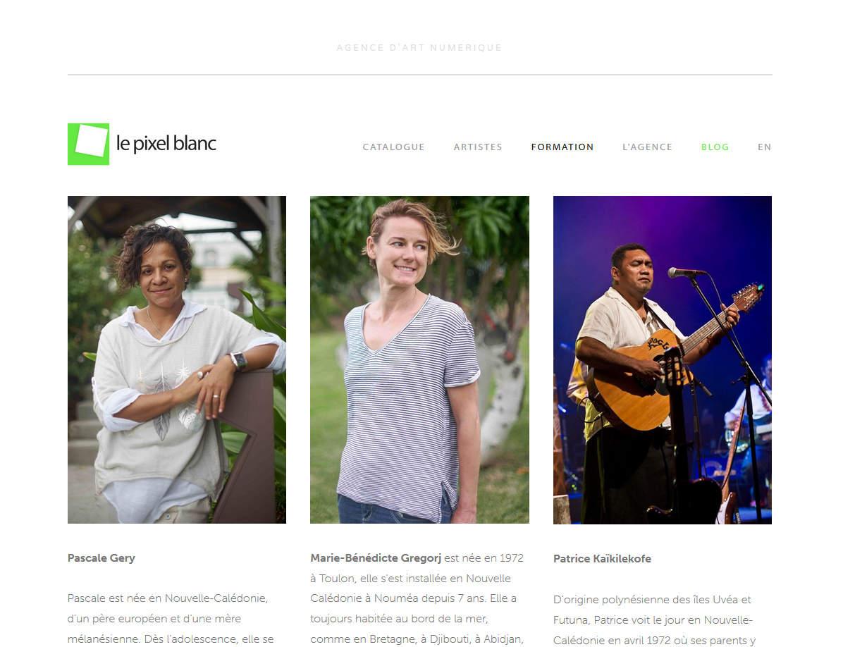 Art numérique en Nouvelle-Calédonie : formation & perspective
